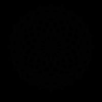 Geometric Lotus Mandala Pattern