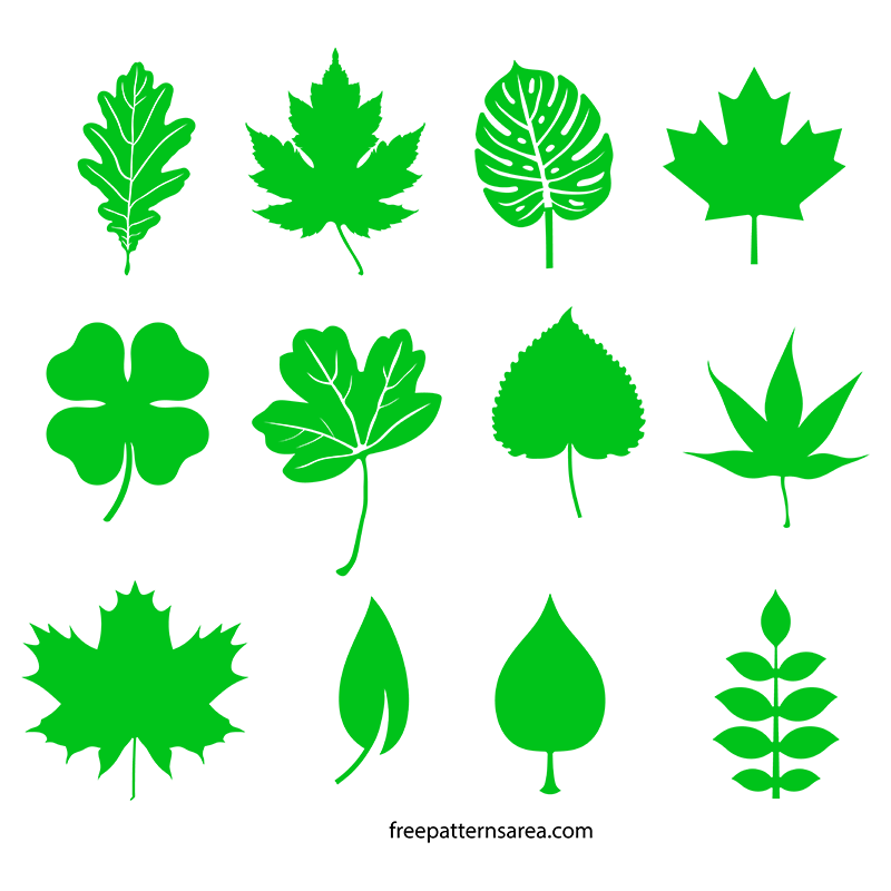 Leaf Image Shapes Design SVG File