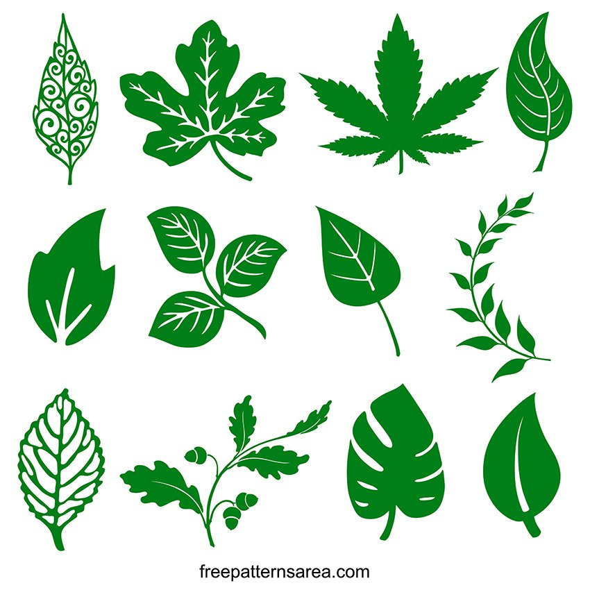 Free Green Leaves Svg Designs Graphic Images